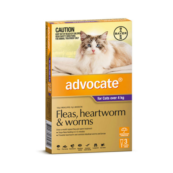 Advocate Purple Spot-On for Medium & Large Cats - 3 Pack 1