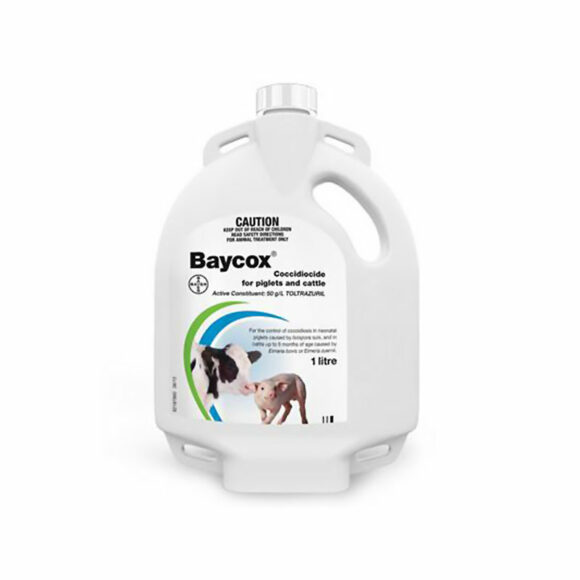 Baycox Coccidiocide for Piglets and Cattle 1L 1