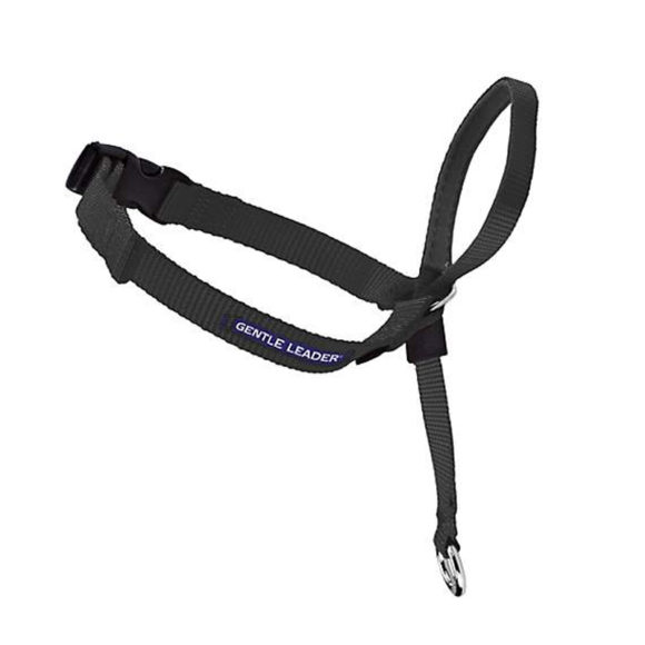 Gentle Leader Black Headcollar - Medium 1