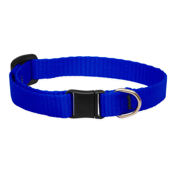Lupine Blue Safety Cat Collar 1