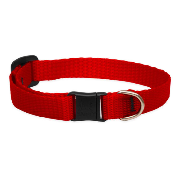 Lupine Red Safety Cat Collar 1