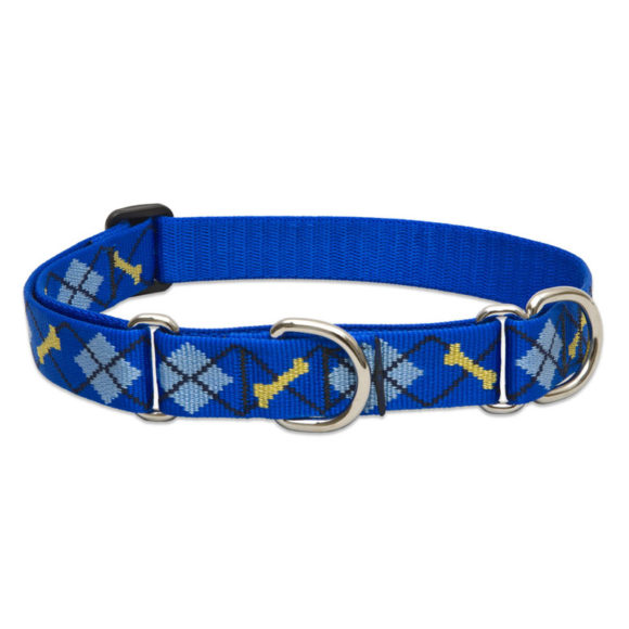 "Lupine Dapper Dog Large Dog Martingale Training Collar 15-22"" 1"