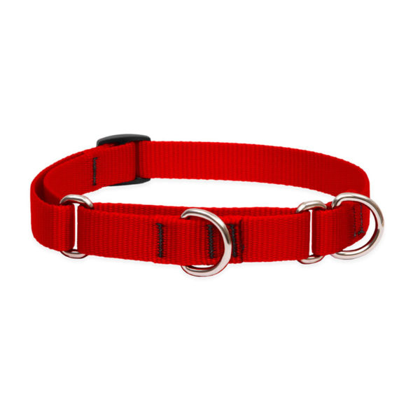"Lupine Red Medium Dog Martingale Training Collar 14-20"" 1"