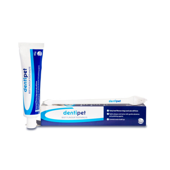 Dentipet Beef Flavour Toothpaste & Toothbrush Kit for Dogs & Cats 1