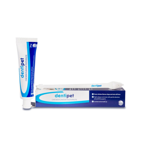 Dentipet Chicken Flavour Toothpaste & Toothbrush Kit for Dogs & Cats 1