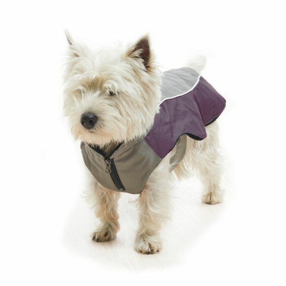 BUSTER Classic Winter Dog Coat Steel Grey/Black Plum Small 2