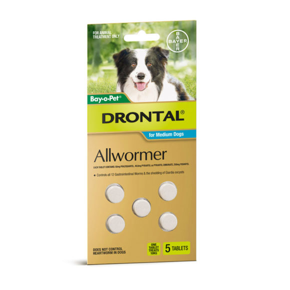 Drontal Allwormer Tablets for Dogs (up to 10kg) - 5 Pack 1