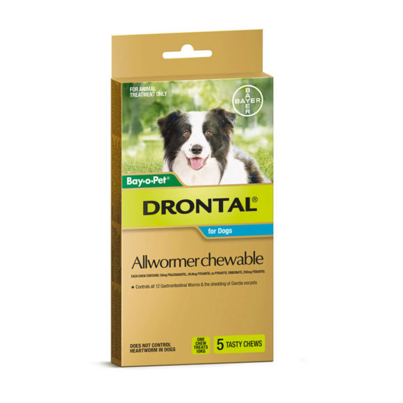 Drontal Allwormer Chews for Dogs (up to 10kg) - 5 Pack 1