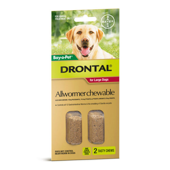 Drontal Allwormer Chews for Large Dogs (10-35kg) - 2 Pack 1