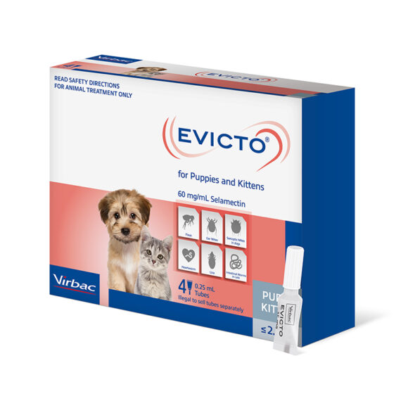 Evicto Spot-On for Puppies and Kittens - 4 Pack 1