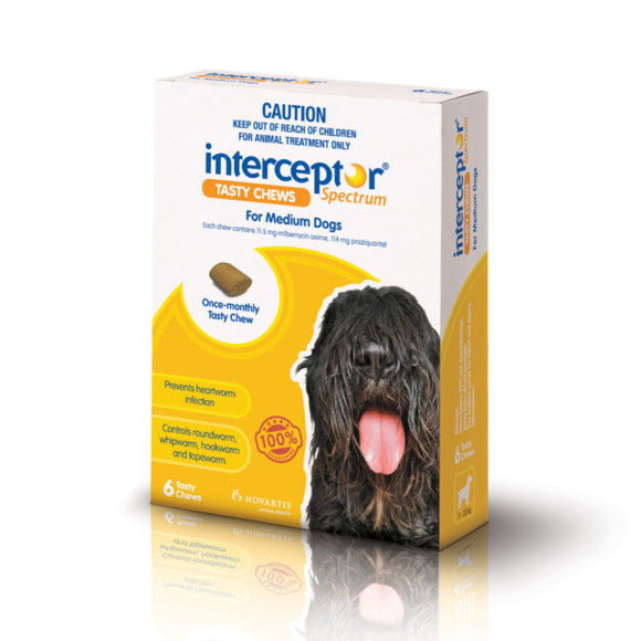 Interceptor Spectrum Yellow Chews for Medium Dogs - 6 Pack 1