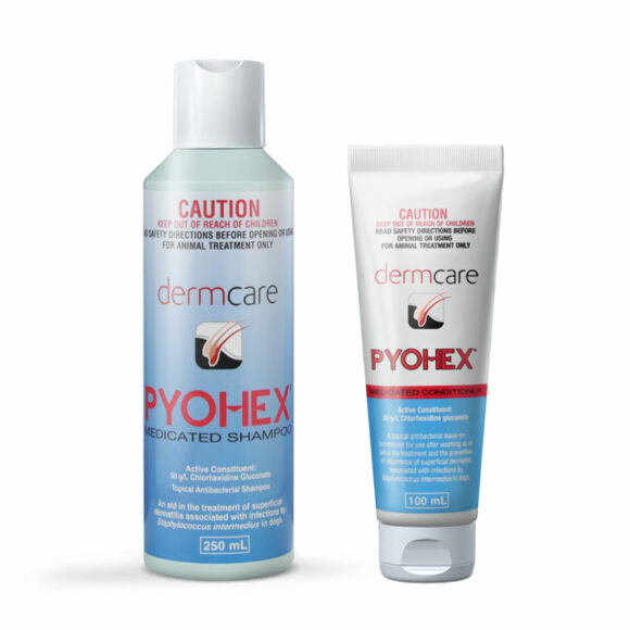 Pyohex Medicated Shampoo & Conditioner Starter Pack 1