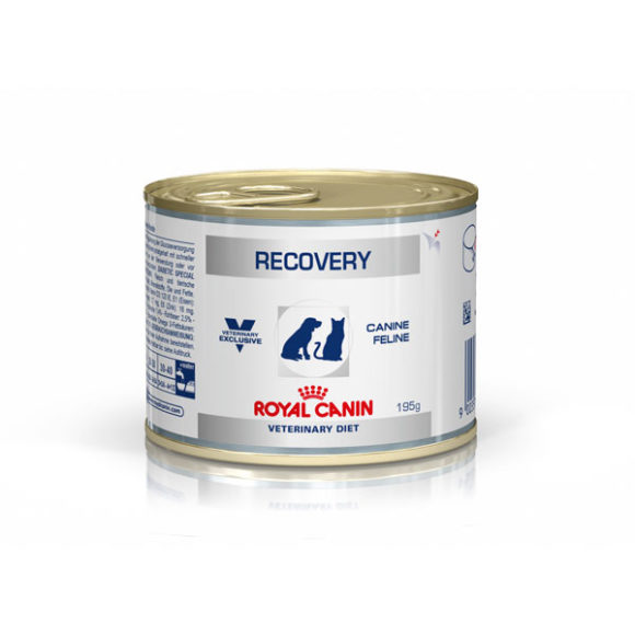 Royal Canin Vet Diet Canine/Feline Recovery 195g x 12 Cans 1