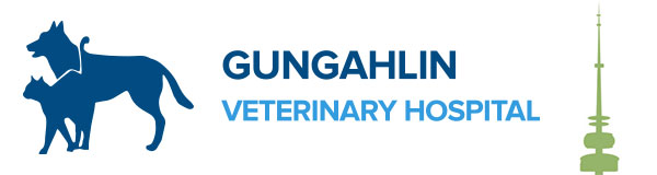 Gungahlin Veterinary Hospital Shop